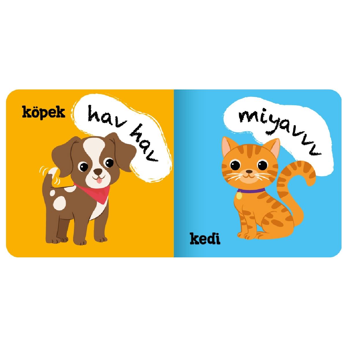 Mini Books - Animals