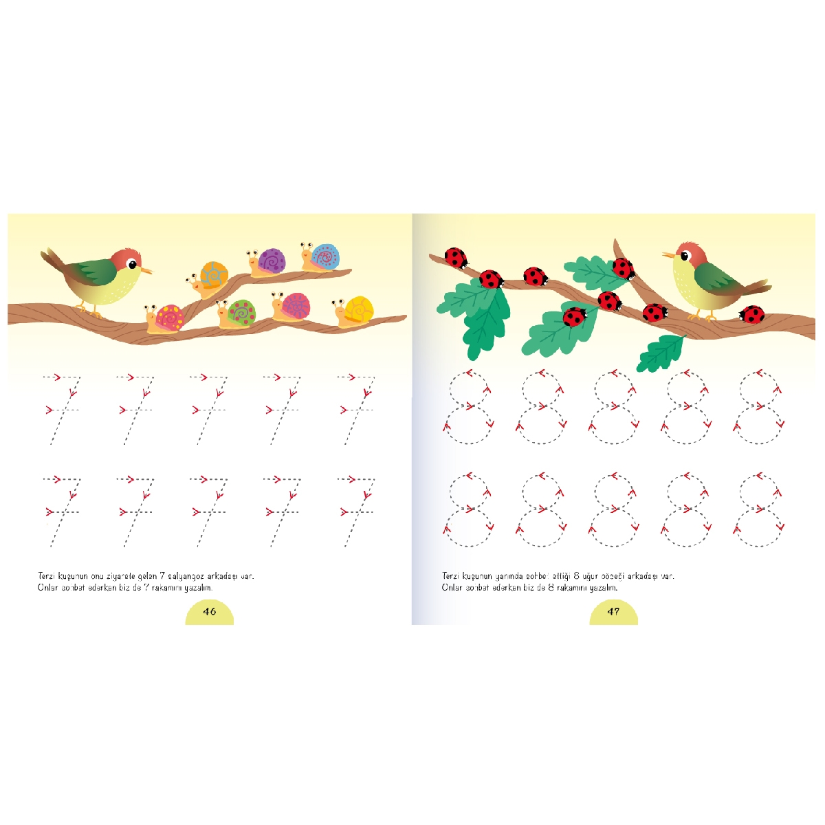 'The Tailor Bird is Sewing Up' Drawing Book for Kids